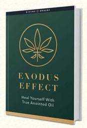 Exodus Effect